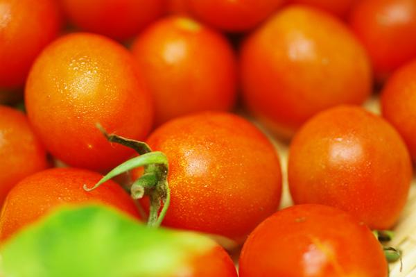 ,無肥料・自然栽培ミニトマト(サングレープ)