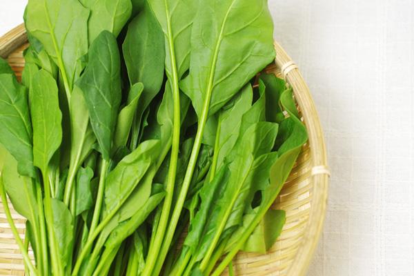 無肥料・自然栽培サラダほうれん草