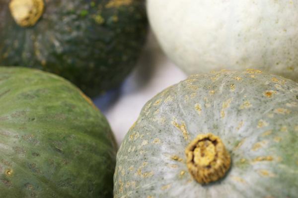 無肥料・自然栽培ほっこり南瓜