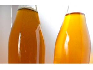 他の菜種油との比較