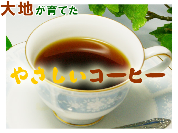 大地が育てた無農薬・自然栽培のやさしいコーヒー