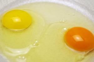 こがね卵と市販の卵
