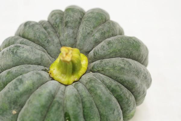 無肥料・自然栽培元ちゃんファームの小菊南瓜