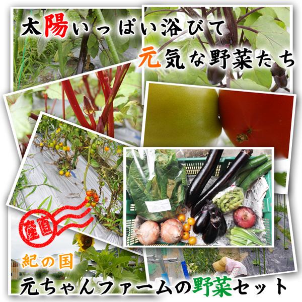 和歌山県元ちゃんファームの野菜セット