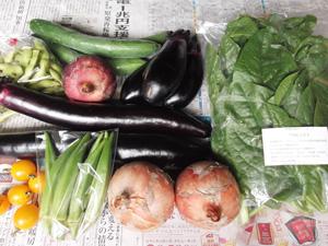2012年7月21日の元ちゃんの無農薬野菜セット
