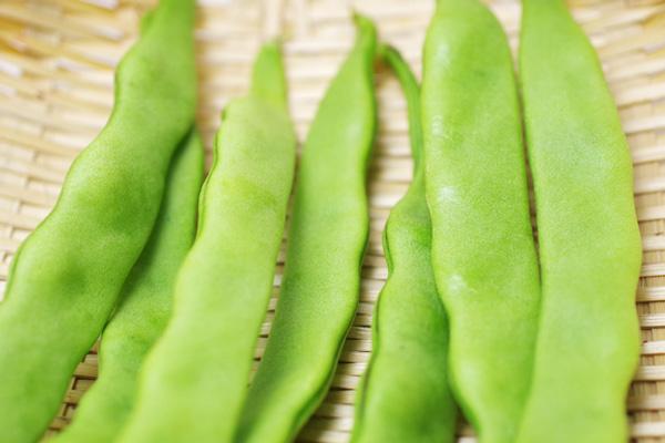 無肥料・自然栽培ハイツ野菜研究部の平サヤインゲン