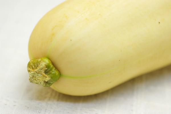 無肥料・自然栽培バターナッツカボチャ