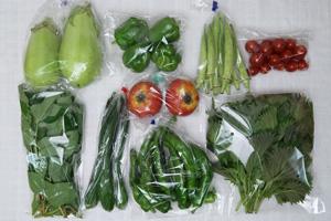 京の野菜セット2020年7月22日の内容