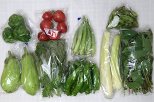 京の野菜セット2020年8月5日の内容