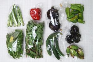 京の野菜セット2020年8月19日の内容