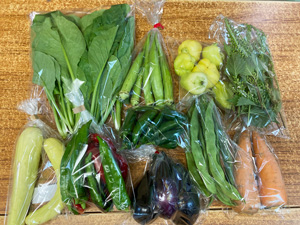 京の野菜セット2020年9月30日の内容