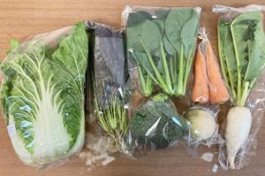 京の野菜セット2020年12月9日の内容
