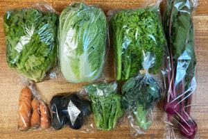 京の野菜セット2020年12月23日の内容