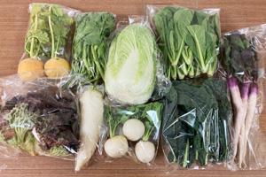 京の野菜セット2021年2月3日の内容