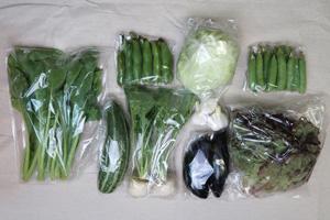 京の野菜セット2021年6月9日の内容
