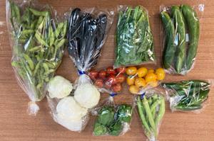 京の野菜セット2021年7月14日の内容