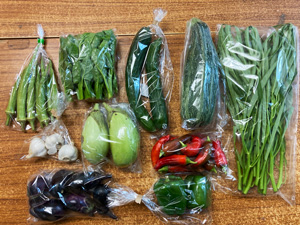 京の野菜セット2021年9月8日の内容