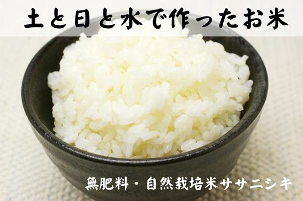 無肥料・無農薬栽培米ササニシキ