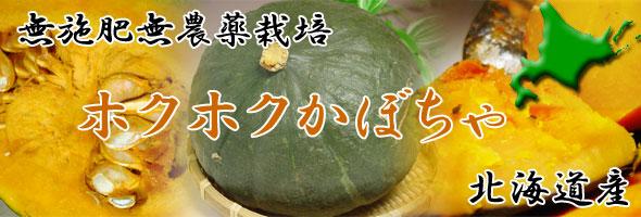 【無施肥無農薬栽培】カボチャ