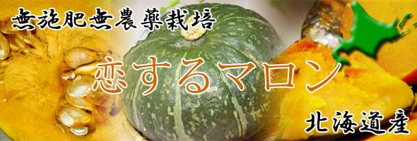 【無施肥無農薬栽培】恋するマロン南瓜(カボチャ)