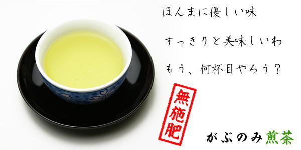 すっきり優しい味のがぶのみ煎茶