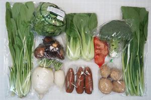 2月4日の無施肥無農薬栽培と自然栽培の定期宅配Mセット/大根、ジャガイモ(出島)、里芋、ニンジン、ブロッコリー、レタス、青梗菜(チンゲン菜)、小松菜、壬生菜、新生姜