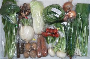 2月7日の無施肥無農薬栽培と自然栽培の定期宅配Lセット/大根、小カブ、玉ねぎ、ジャガイモ(出島)、里芋、ニンジン、ゴボウ、ブロッコリー、レタス、白菜、ほうれん草、小松菜、壬生菜、ニンニクの葉、ミニトマト