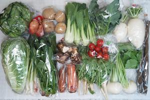 2月11日の無施肥無農薬栽培と自然栽培の定期宅配Lセット/大根、小カブ、ジャガイモ(出島)、里芋、ニンジン、ゴボウ、ブロッコリー、レタス、白菜、青梗菜(チンゲン菜)、ほうれん草、大根葉(中抜き葉)、ニンニクの葉、新生姜、ミニトマト