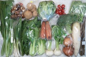 2月14日の無施肥無農薬栽培と自然栽培の定期宅配Lセット/大根、小カブ、玉ねぎ、ジャガイモ(出島)、里芋、ニンジン、ゴボウ、ブロッコリー、レタス、青梗菜(チンゲン菜)、ほうれん草、小松菜、菜の花、ニンニクの葉、ミニトマト