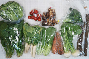 2月14日の無施肥無農薬栽培と自然栽培の定期宅配Mセット/小カブ、里芋、ニンジン、ゴボウ、ブロッコリー、レタス、青梗菜(チンゲン菜)、ほうれん草、大根葉(中抜き葉)、ミニトマト