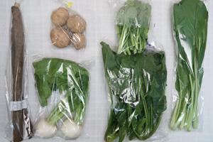 2月14日の無施肥無農薬栽培と自然栽培の定期宅配Sセット/小カブ、ジャガイモ(出島)、ゴボウ、ほうれん草、小松菜、菜の花