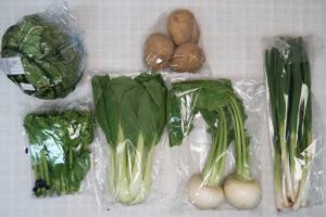 2月18日の無施肥無農薬栽培と自然栽培の定期宅配Sセット/小カブ、ジャガイモ(出島)、レタス、青梗菜(チンゲン菜)、ニンニクの葉、菜の花