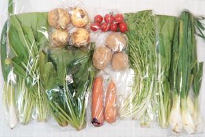 3月27日の無施肥無農薬栽培と自然栽培の野菜の定期宅配セット