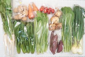 4月7日の無施肥無農薬栽培と自然栽培の野菜の定期宅配セット