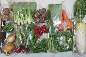 5月1日の無施肥無農薬栽培と自然栽培の定期宅配Lセット/大根、ゴボウ、ニンジン、ジャガイモ(北あかり)、里芋、新玉ねぎ、絹さや、スナップエンドウ、ニンニクの芽、アスパラ、ラディッシュ、小松菜、青梗菜(チンゲン菜)、菜の花、ミニトマト