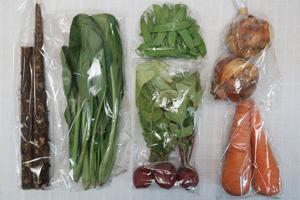 5月1日の無施肥無農薬栽培と自然栽培の定期宅配Sセット/ゴボウ、ニンジン、新玉ねぎ、絹さや、ラディッシュ、小松菜