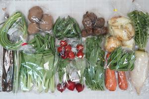 5月5日の無施肥無農薬栽培と自然栽培の定期宅配Lセット/大根、ゴボウ、ニンジン、新玉ねぎ、ジャガイモ(北あかり)、里芋、赤空豆、絹さや、スナップエンドウ、ニンニクの芽、アスパラ、ラディッシュ、青梗菜(チンゲン菜)、菜の花、ミニトマト
