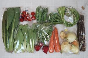 5月5日の無施肥無農薬栽培と自然栽培の定期宅配Mセット/ゴボウ、ニンジン、新玉ねぎ、絹さや、スナップエンドウ、ニンニクの芽、ラディッシュ、小松菜、青梗菜(チンゲン菜)、ミニトマト