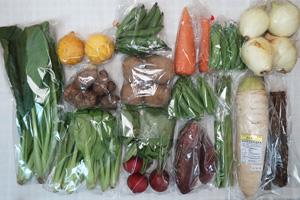 5月8日の無施肥無農薬栽培と自然栽培の定期宅配Lセット/大根、ゴボウ、ニンジン、新玉ねぎ、ジャガイモ(北あかり)、里芋、サツマイモ、赤空豆、絹さや、スナップエンドウ、アスパラ、ラディッシュ、小松菜、青梗菜(チンゲン菜)、レモン