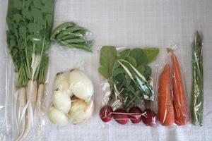 5月12日の無施肥無農薬栽培と自然栽培の定期宅配Sセット/ニンジン、新玉ねぎ、アスパラ、スナップエンドウ、ラディッシュ、大根葉(中抜き葉)