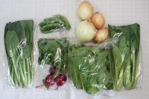 5月19日の無施肥無農薬栽培と自然栽培の定期宅配Sセット/新玉ねぎ、スナップエンドウ、サラダ菜、ラディッシュ、小松菜、しろ菜