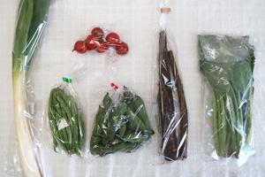 5月22日の無施肥無農薬栽培と自然栽培の定期宅配Sセット/ゴボウ、長ネギ、そら豆、インゲン、小松菜、ミニトマト