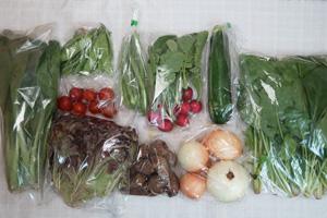6月5日の無施肥無農薬栽培と自然栽培の野菜の定期宅配セット