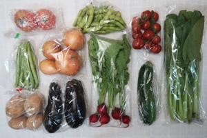7月7日の無施肥無農薬栽培と自然栽培の定期宅配Mセット/新玉ねぎ、ジャガイモ(西豊)、ズッキーニ、茄子、インゲン、枝豆、小松菜、ラディッシュ、ミニトマト、トマト