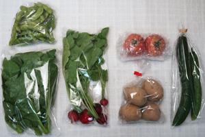7月7日の無施肥無農薬栽培と自然栽培の定期宅配Sセット/ジャガイモ(西豊)、キュウリ、枝豆、ツルムラサキ、ラディッシュ、トマト