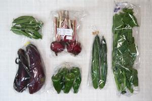 7月10日の無施肥無農薬栽培と自然栽培の定期宅配Sセット/赤かぶ、キュウリ、茄子、ピーマン、スナップエンドウ、ツルムラサキ