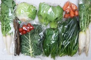 12月4日の無施肥無農薬栽培と自然栽培の野菜の定期宅配セット