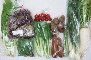 4月2日の無施肥無農薬栽培と自然栽培の定期宅配Mセット/大根、里芋、ニンジン、サニーレタス、アスパラ、葉玉ねぎ、水菜、青梗菜(チンゲン菜)、のらぼう菜、ミニトマト