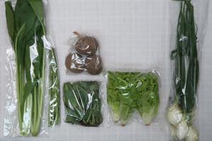 4月9日の無施肥無農薬栽培と自然栽培の定期宅配Sセット/ジャガイモ(さやあかね)、リーフレタス、葉玉ねぎ、アスパラ、小松菜、のらぼう菜