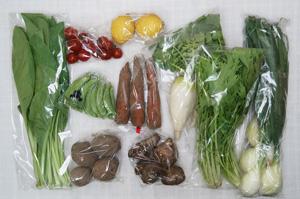 4月13日の無施肥無農薬栽培と自然栽培の定期宅配Mセット/大根、葉玉ねぎ、里芋、ジャガイモ(さやあかね)、ニンジン、スナップエンドウ、小松菜、水菜、レモン、ミニトマト